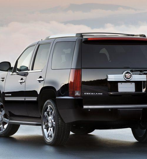 2010 Cadillac Escalade. X10CA_ES002  (United States)